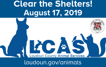 Image of Animal Services Logo with Clear the Shelters event information