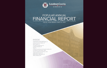Image of cover of Popular Annual Financial Report