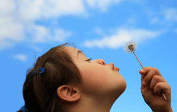 Girl blowing on a dandelion on a sunny day